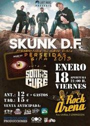 SKUNK DF + Somas Cure zgz conciertos