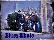 BLUES WHALE @ PUB ECCOS | Zaragoza | Aragón | España