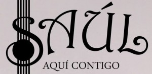 Saul Zgz Conciertos