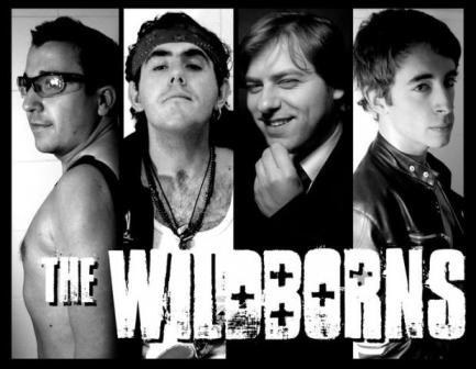Concierto The Wildborns Pub Eccos