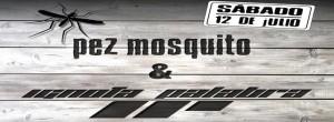 PEZ MOSQUITO + IGNOTA PALABRA @ AVV Arrebato  | Zaragoza | Aragón | España