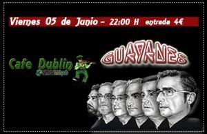 LOS GUAYANES @ CAFE DUBLIN | Zaragoza | Aragón | España