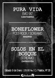 PURA VIDA + BONEFLOWER + SOLOS EN EL BOSQUE @ AVV Arrebato  | Zaragoza | Aragón | España