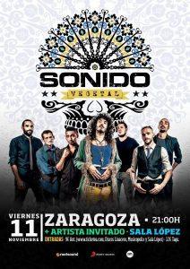 SONIDO VEGETAL @ SALA LÓPEZ | Zaragoza | Aragón | España
