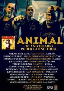A.N.I.M.A.L. @ LA LEY SECA | Zaragoza | Aragón | España