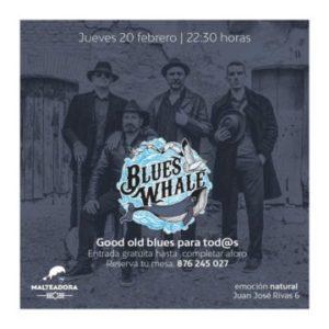 Blues Whale